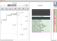 delimiter_after_collpsed_node.png